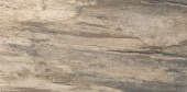Petrified Tree Beige Bark 45*90 Naturale rett.