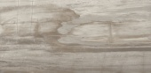 Petrified Tree Grey Panther Core 44,4*89 Lappato rett.