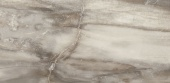 Petrified Tree Grey Panther Core 30*60 Naturale rett.