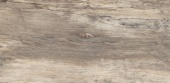Petrified Tree Beige Bark 30*60 Naturale rett.